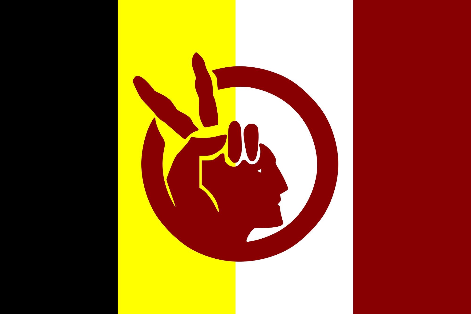 American Indian Movement (Wikimedia CC)