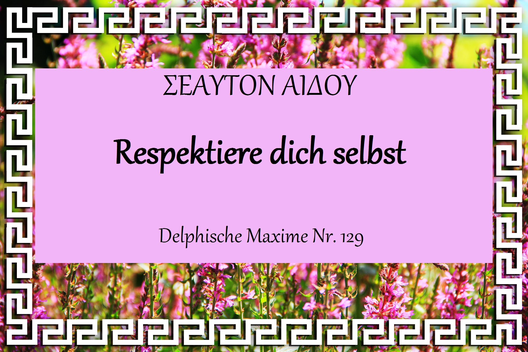 Respektiere dich selbst